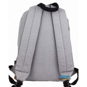 grey Canvas college backpack