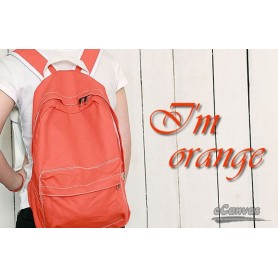 orange Small canvas bag
